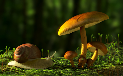 forest_blender_final_thumb