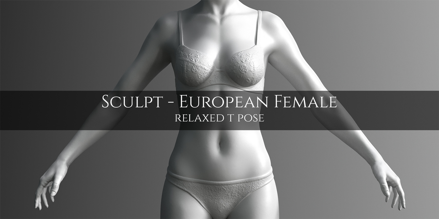 Blender Market European Female Anatomy Sculpt Model Blendernation