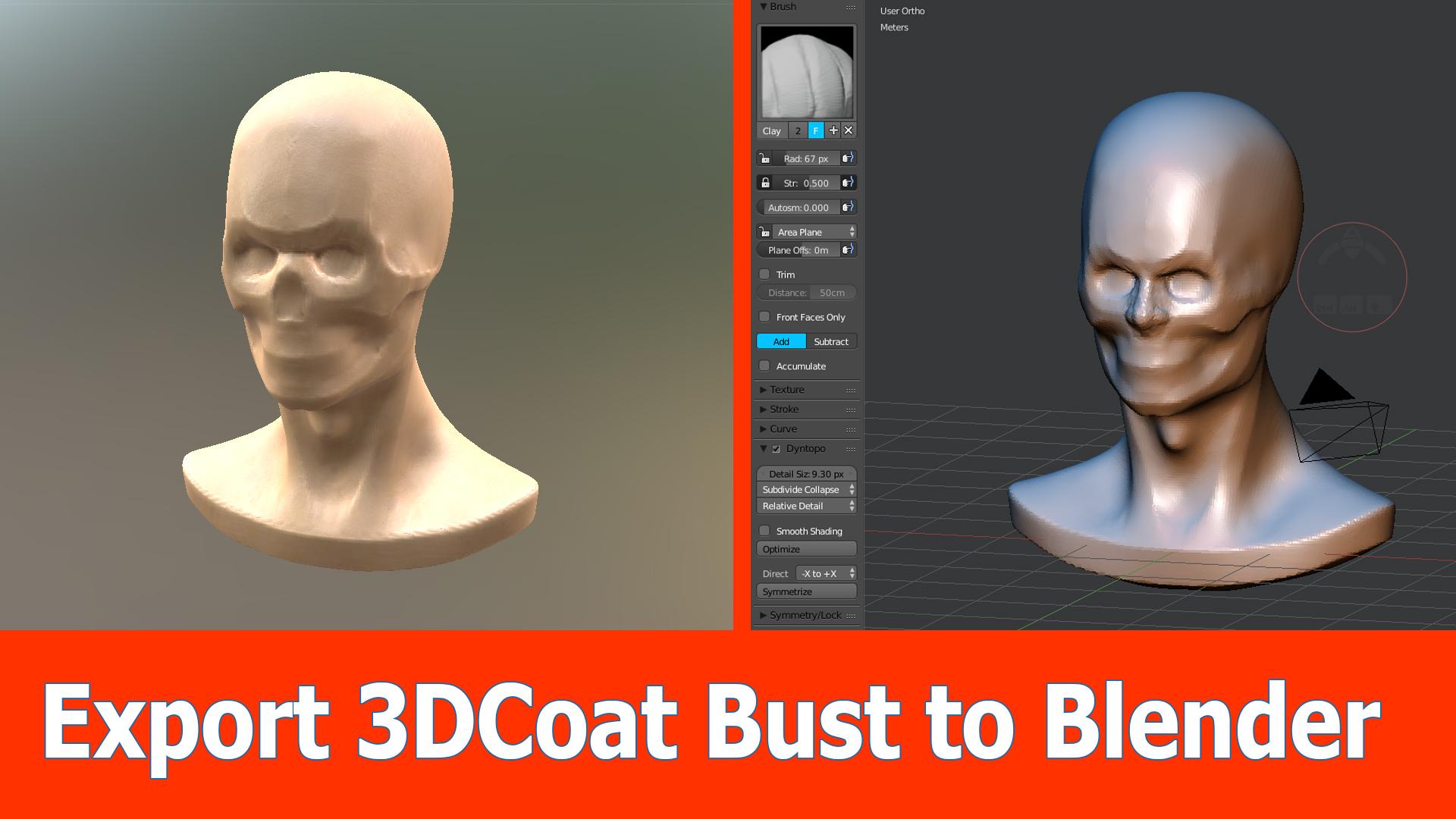 3D-Coat Bust to Blender for Sculpting - BlenderNation