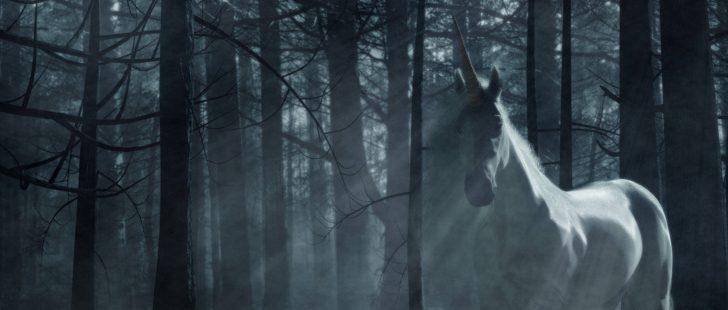 Unicorn In The Forest Blendernation