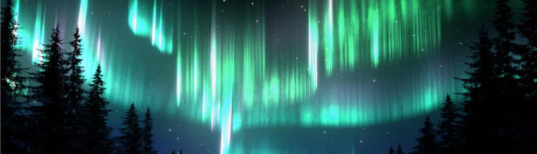 Aurora Borealis Forest - BlenderNation